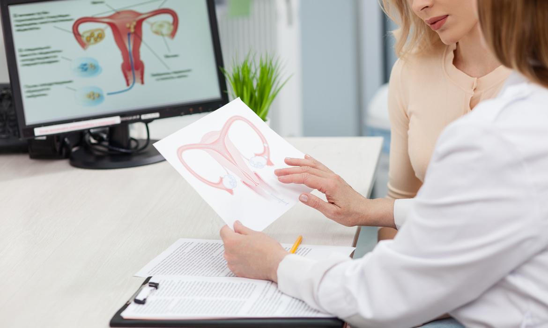 Ovulação Tardia